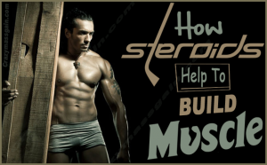 Steroids Help Build Muscles