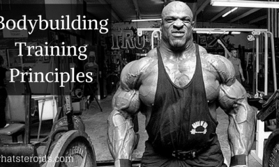 Bodybuilding Training Principles