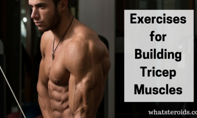 Exercises for Building Tricep Muscles