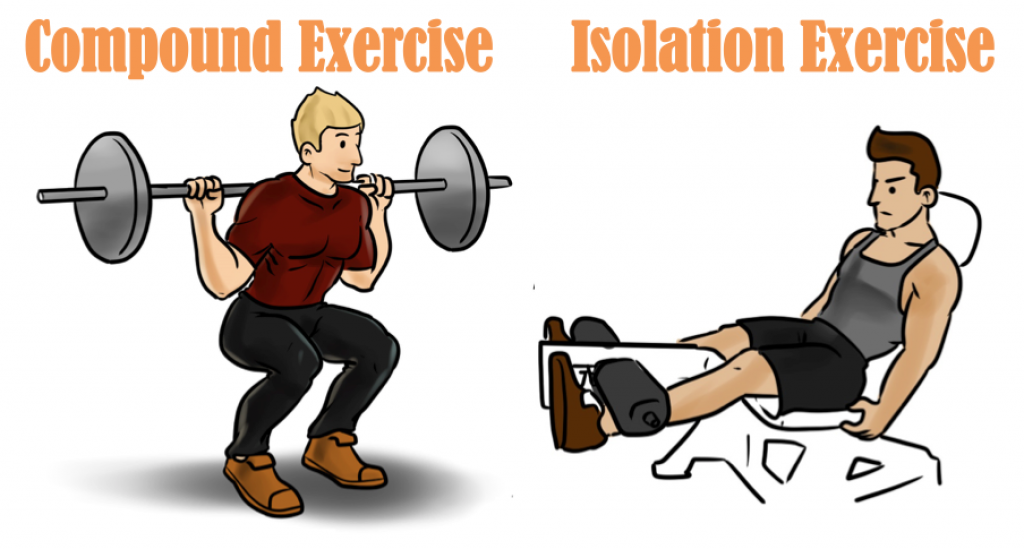 Compound and Isolation Exercises