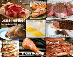 Different sources of protein: