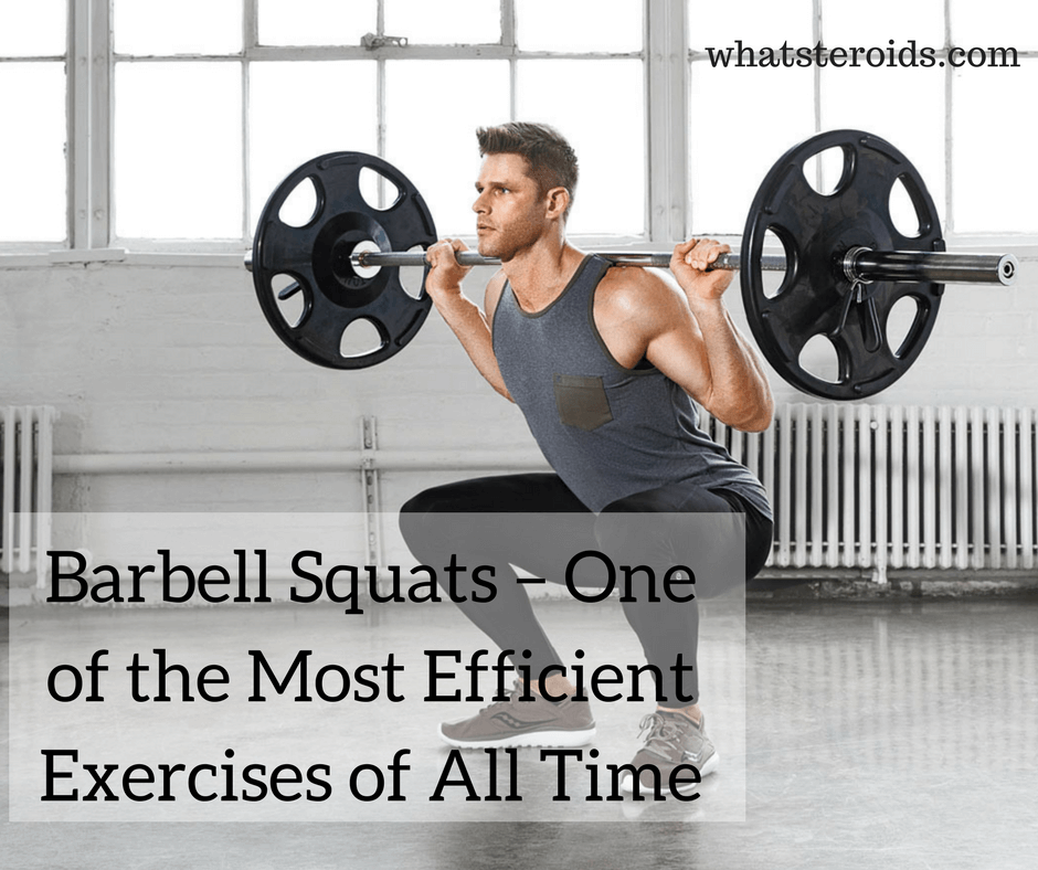 Barbell Squats – One of the Most Efficient Exercises of All Time