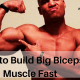How to Build Big Biceps Muscle Fast