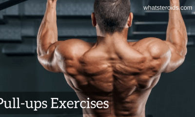 Pull-ups exercises