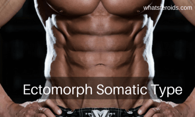 Ectomorph Somatic Type