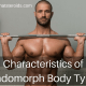 Characteristics of Endomorph Body Type