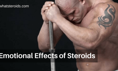 Emotional Effects of Steroids