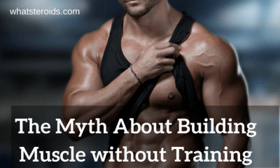 The Myth About Building Muscle without Training