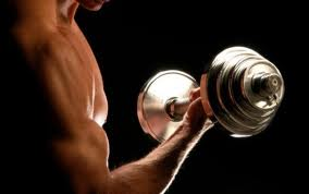 Positive and Negative Movements in Bodybuilding