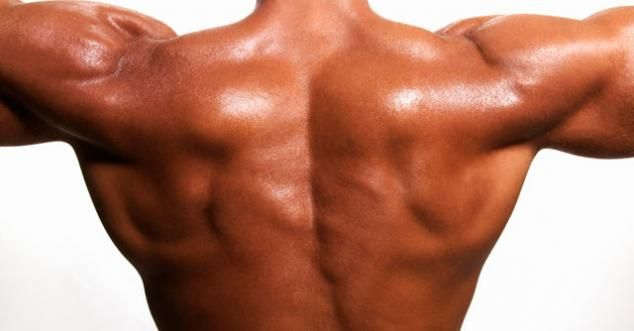 The Weights for Getting Muscle Contour