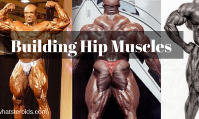 Building Hip Muscles