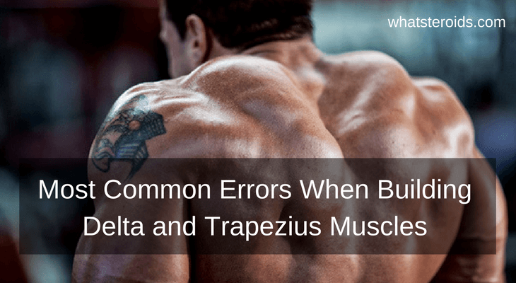Most Common Errors Admitted When Building Delta and Trapezius Muscles