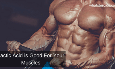 Lactic Acid is Good For Your Muscles