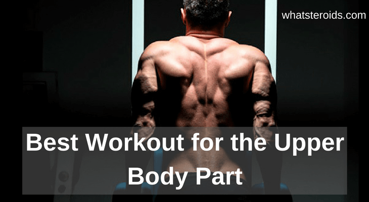 Best Workout For the Upper Body Part