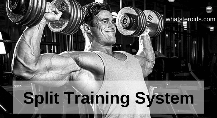 Split Training System
