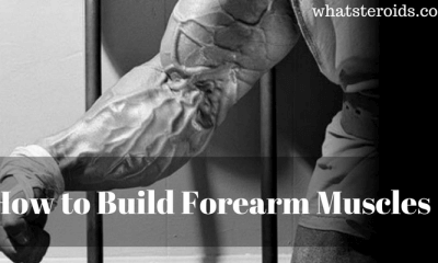 How to Build Forearm Muscles