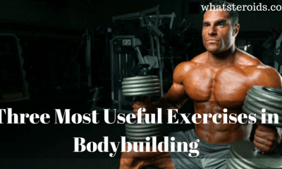 Three Most Useful Exercises in Bodybuilding