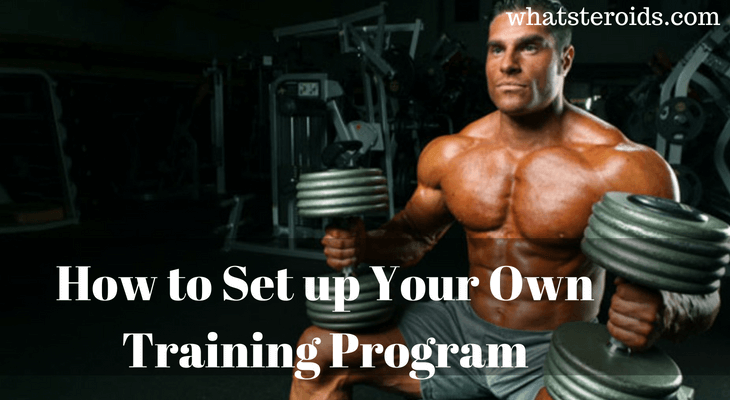 How to Set up Your Own Training Program