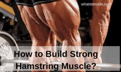 How to Build Strong Hamstring Muscle?