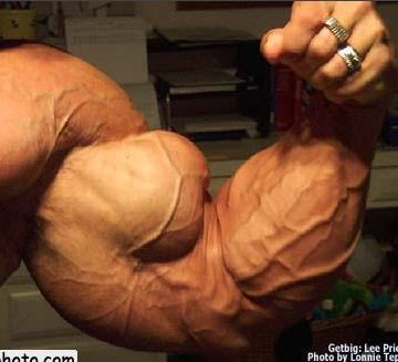 -Forearm increase upper arm.