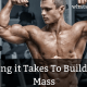 How Long it Takes To Build Muscle Mass