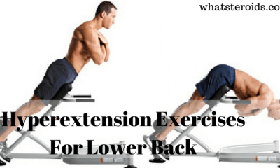 Hyperextension Exercises For Lower Back