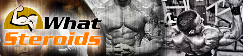 What are Steroids - Online Blog