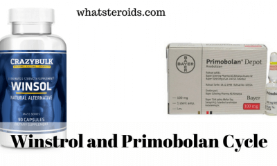 Winstrol and Primobolan Cycle