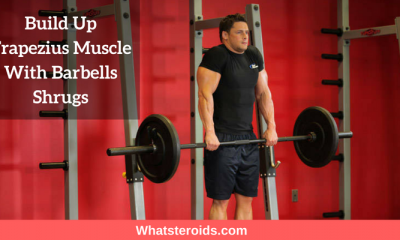 Build Up Trapezius Muscle With Barbells Shrugs