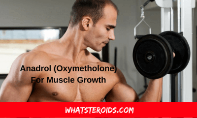 Anadrol (Oxymetholone) For Muscle Growth