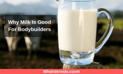 Why Milk Is Good For Bodybuilders