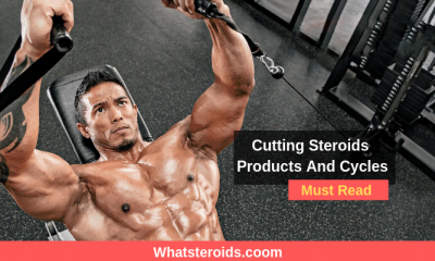 Cutting Steroids Products And Cycles