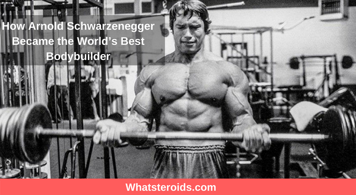 How Arnold Schwarzenegger Became the World's Best Bodybuilder