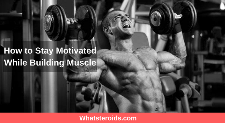 How to Stay Motivated While Building Muscle