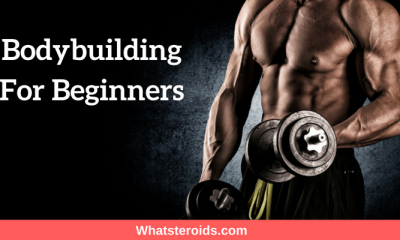 Bodybuilding For Beginners