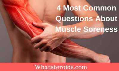 4 Most Common Questions About Muscle Soreness