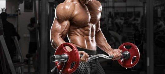 Best Steroids For Increasing Body Strength Are