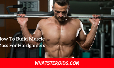 How To Build Muscle Mass For Hardgainers