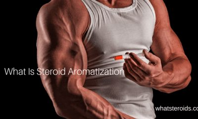 What Is Steroid Aromatization