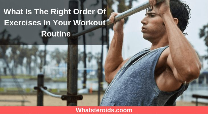 What Is The Right Order Of Exercises In Your Workout Routine