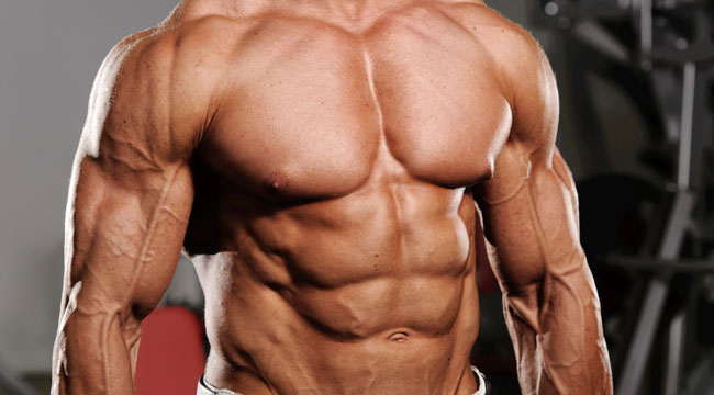 Abs Muscle are Different than other Group of Muscle