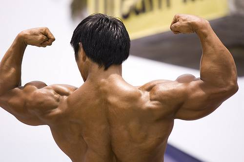 What Is Muscle Hypertrophy - What Steroids