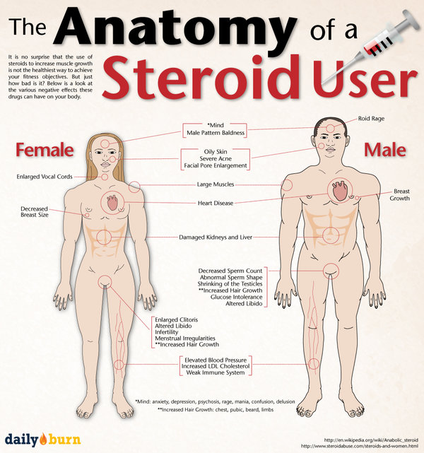 steroid effects on human body Start studying chapter 8 learn vocabulary,  the two primary effects testosterone has on the human body are _____ and  b the adverse effects of steroid use.