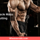 Keeping Muscle Mass While Cutting