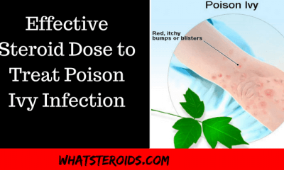 Effective Steroid Dose to Treat Poison Ivy Infection