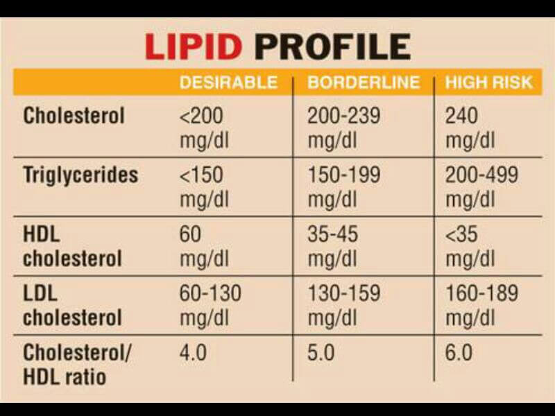 Lipid Profile in Normal Ranges