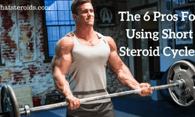 The 6 Pros For Using Short Steroid Cycles