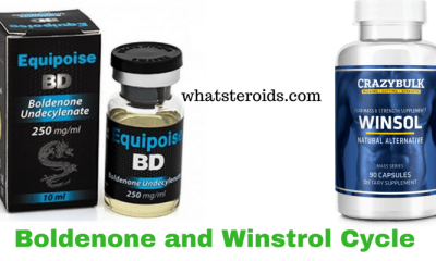 Boldenone and Winstrol Cycle
