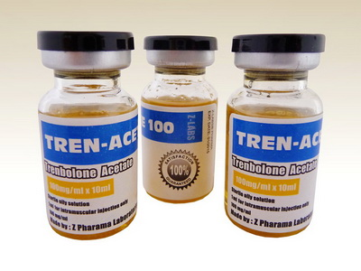 Tren Ace and Test Prop cycle – WhatSteroids