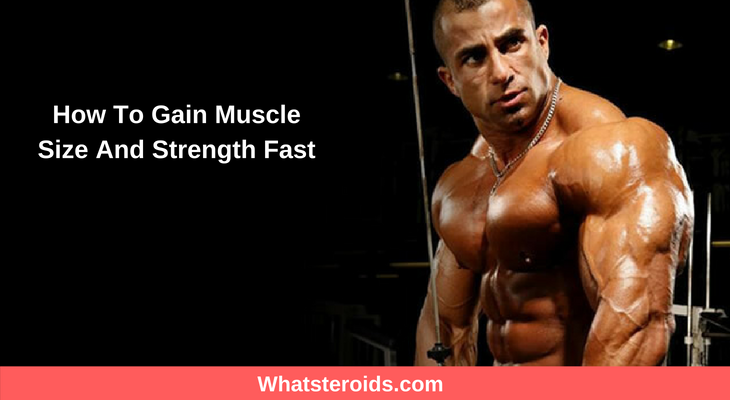 How To Gain Muscle Size And Strength Fast